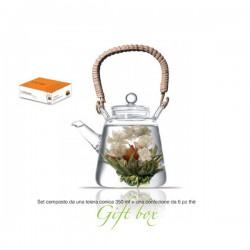 theiera vetro 350 ml con tea box 6pz lady bird