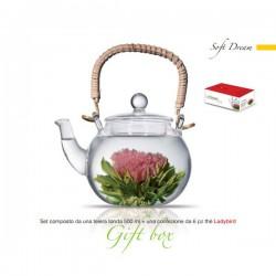 theiera vetro 500 ml con tea box 6pz soft dream