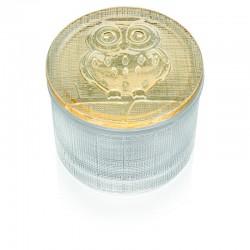 segreti scatolina trasparente con coperchio gufo