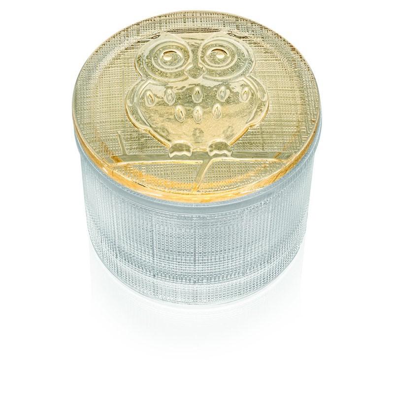 Bomboniera segreti scatolina trasparente con coperchio gufo
