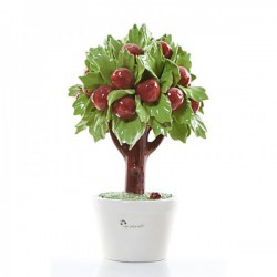 albero di mele 14cm