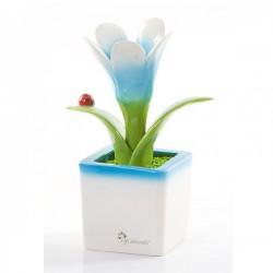 cubotto piccolo fiore celeste