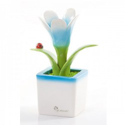 fiore celeste 18cm
