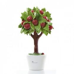 albero di mele 19cm