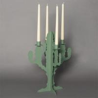 candelabro cactus verde salvia