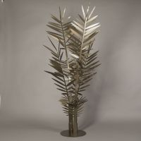 pianta  big kenzia bronzo