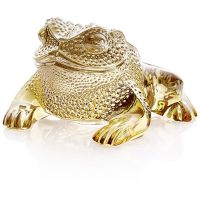 tartaruga oro gregoire