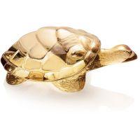 tartaruga oro caroline