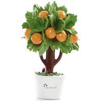 albero di arance 16cm