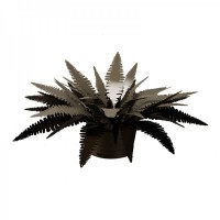 pianta felce grande bronzo sabbia