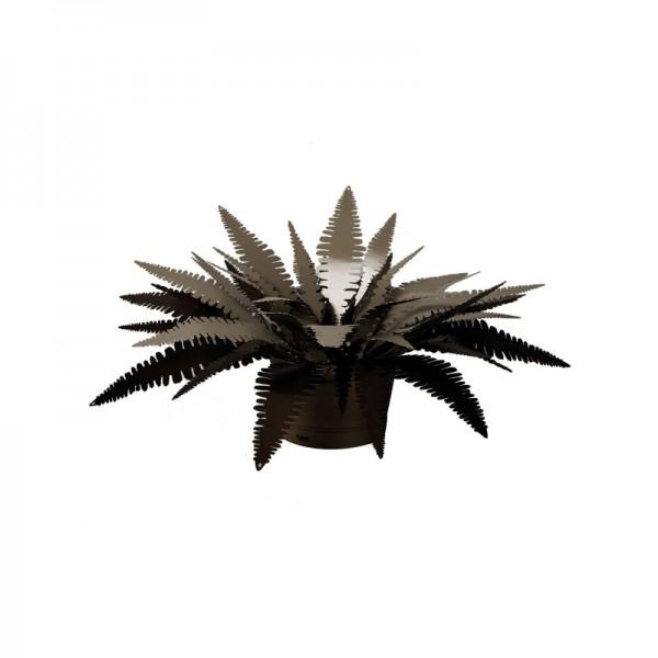 pianta felce piccola bronzo sabbia