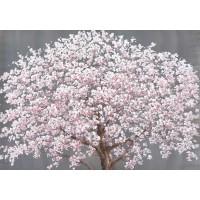 Quadro japan spring 120cm (fondo argentato)
