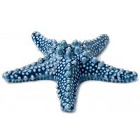 stella marina in porcellana blu 12cm